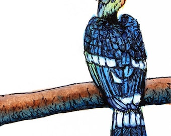 Great Hornbill ACEO Print, Acrylic Painting Print, Animal Art Print, ACEO ATC
