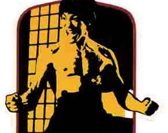 Vintage Style Bruce Lee 1970's  Travel Decal bumper sticker