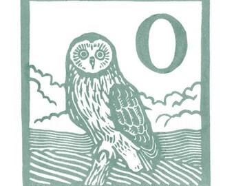 O - Owl