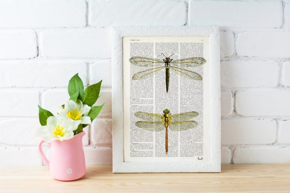 Dragonflies studio - Dictionary Book Print - Altered art on upcycled book pages BFL100