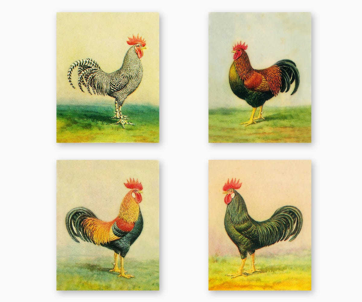 FARM ANIMAL WALL Art Farmhouse Decor Kitchen Printable
