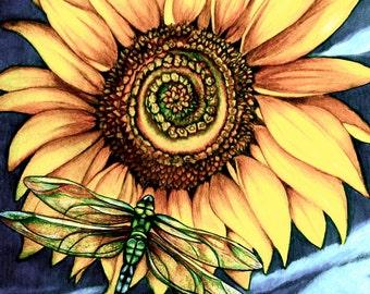 sunflower art print by ClaudiaTremblay