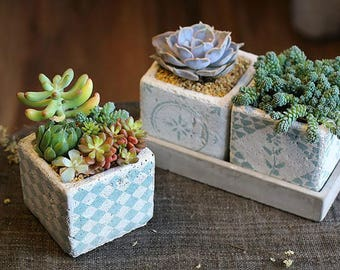 Set of 3 - Stoneware Planter Set for Succulent with Tray, Air Plants, Succulent Planter, Mini Planter, Ceramic Planter, Ceramic Pot,Mini Pot