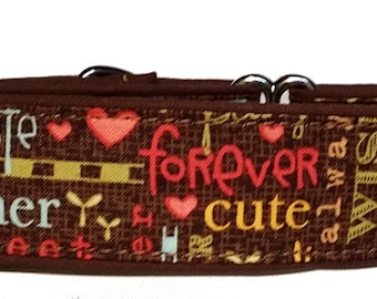 "Colorful Words  Martingale Collar 1.5"" Wide"