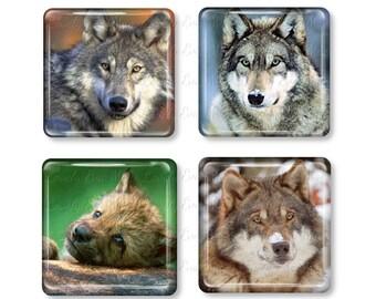 Set of 4, Wolf Magnets, Glass Tile Magnets, Glass Magnet, Refrigerator Magnets, Fridge Magnets, Wolves, Wolf Gift, Wilderness, Dog Gift