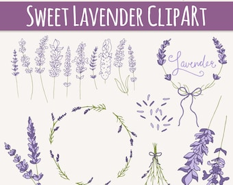CLIP ART: Lavender Sprigs // Photoshop Brushes // Digital Elements // Herbal Foliage Leaves Twigs Branches // Vector Files // Commercial Use