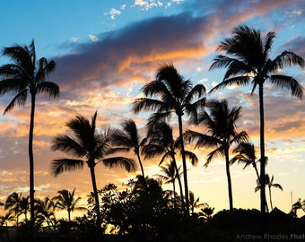 Hawaii Sunset Photography - Hawaii Print - Lahaina Town - Palm Tree Silhouette, Beach Art, Tropical Sunset - Landscape Photo