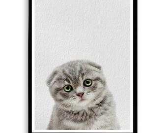 Kitten Print, Cat Photo, Printable Wall Art, Gift, Cute Baby Animal, Nursery Decor, Black and White Animal Photography, Grey White