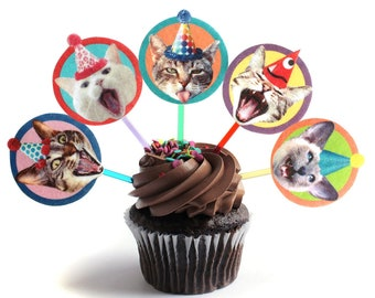 Birthday Cats Cupcake Toppers - set of 6 - photo reproductions on felt - funny cat portraits birthday decor