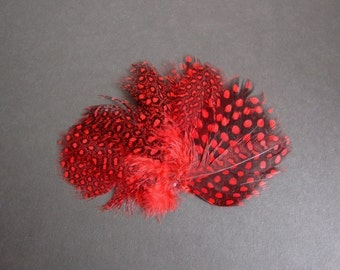 P s y c h e - Red Guinea Butterfly Wing Pheasant Feather Pad.
