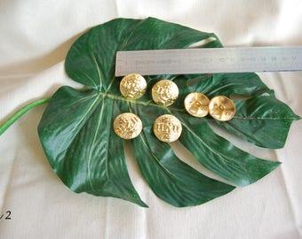 6 buttercups 2.5 cm