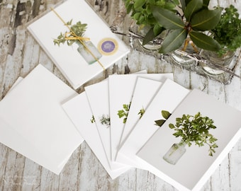 herb notecards, herbs, boxed set of 6, photo notecards, note cards