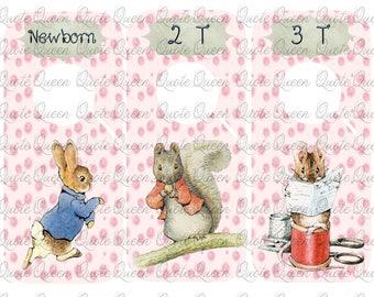 9 Beatrix Potter Clothes Divider, Nursery Closet Dividers, Baby Clothes Dividers