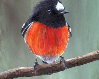 Bird Art Painting Scarlet Robin SFA Wildlife Original hand painted bird acrylic painting by Australian Artist Janet M Graham