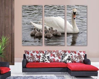 White Swan Cygnets in Lake Canvas Print Wall Art - 3 Panel Split, Triptych. Wall Decor, Home Decor, Living Room decoration, Interior design