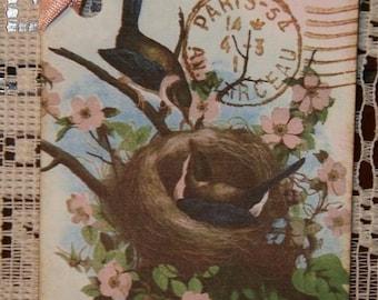 Paris Bird Nest Gift Tags