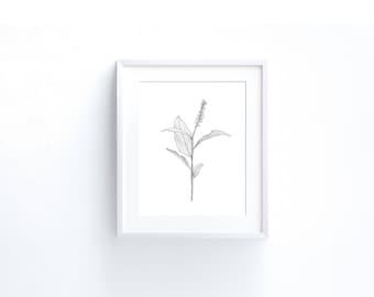 Printable leaf illustration, minimalist drawing, Minimalist Wall Art print, Black and White sketch Art, Printable Art, Botanical Art Print