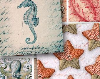 Sailing the Ocean 1.5-inch squares -- Seahorses, Ships, Octopus, Jellyfish, Starfish, Coral -- piddix digital collage sheet 906