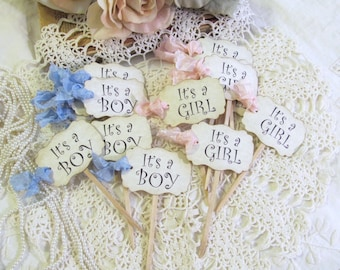 Baby Shower Cupcake Toppers - Its a Boy  or Its a Girl or Mix of Party Picks - gender reveal shower sprinkle