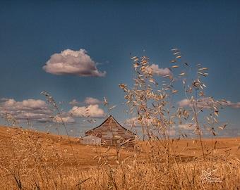 Barns of the Palouse