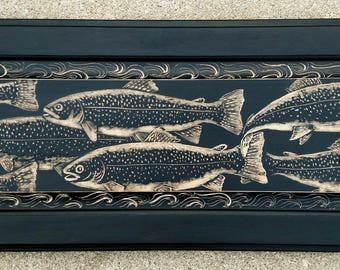 Trout, School of trout, fish, fisherman, native trout, brook trout