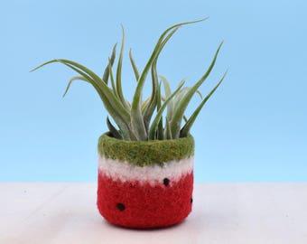 Felt succulent planter / cactus vase / Watermelon vase / summer gift / felted planter / housewarming gift / Red watermelon / gift for her