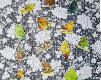 Butterfly stickers, set 1
