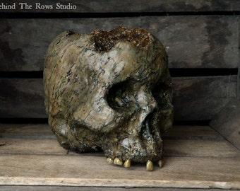 Corpse Head Skull