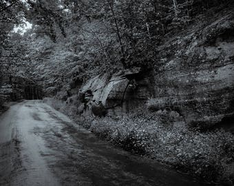 road to my heart, 8x10 fine art black & white photograph, nature