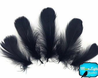 """Wholesale Feathers, 1/4 Lb - Black Goose Coquille 2-3"""" Loose Wholesale Feathers (Bulk) : 3323"""