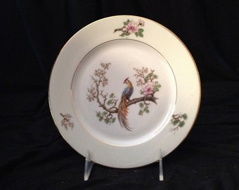 H&C Selb - Heinrich Bird of Paradise Salad Plate - Made in Bavaria Germany; New Condition Vintage 1930's