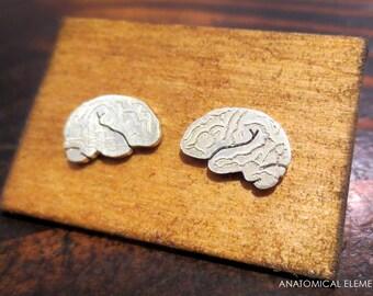 Brain Earrings - Sterling Silver
