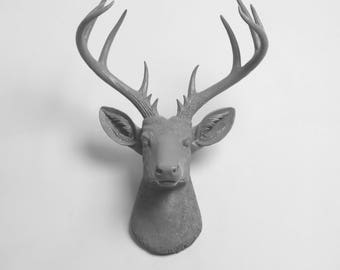 Faux Taxidermy - Faux Deer - The XL Geofrey - Gray Resin Deer Head- Stag Resin Gray Faux Taxidermy - Modern Home Decor
