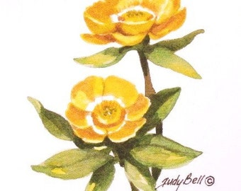 Yellow Buttercup, Wildflower Print, Watercolor Painting
