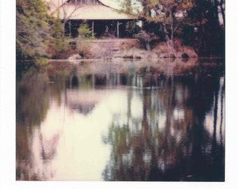 Log Cabin 019