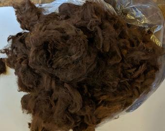 Dark Brown Raw Alpaca Fiber - Blanket 5lbs