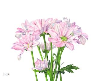 Daisies print of watercolor painting. A4 size. D12816. Daisy watercolor painting, daisy print, daisy painting. botanical art, wall art print