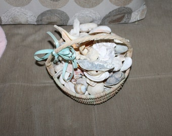Vintage Ocean Shells, All Species, Over 2.5 Pounds, Comes w Basket, Great Home Decoration, Beach Theme, Display, Collector's of Ocean Shells