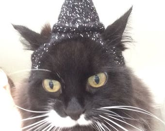 Witches cat hat