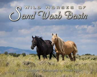 2018 Wild Horses of Sand Wash Basin Wall Calendar, wild mustang photos, wild horses running, wild stallions, Northwest Colorado