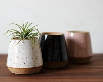 Karst Planter Trio