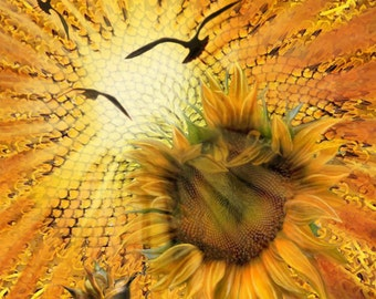 Original Painting, Sunflower, Sunshine, Decor, Archival Print, Birds, Seasons, Wall Decor
