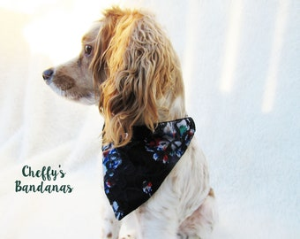 Floral and Black Lace Dog Collar Bandana