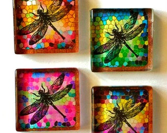 Glass Magnets - Dragonflies - Free U.S. Shipping - Dragonfly - Gift for Gardener - Set of 4 - 1 Inch Glass Squares
