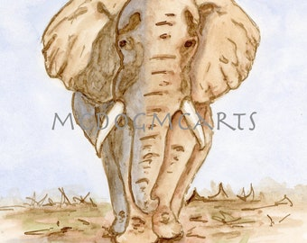 Elephant- watercolor and ink