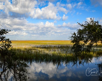 Epic Wetlands