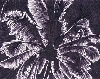 Palm 1 - Original Pen Drawing