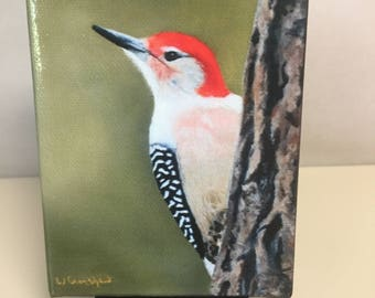 Mini Giclee  PRINT of a Red-Bellied Woodpecker. A common sight in the Sandhills of North Carolina