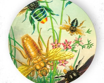 Insects III bees plate
