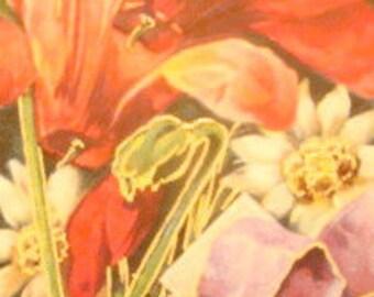 LAST CHANCESALE Beautiful Vintage Floral Postcard